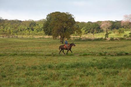 Landschaft und Reiter in Mato Grosso do Sul