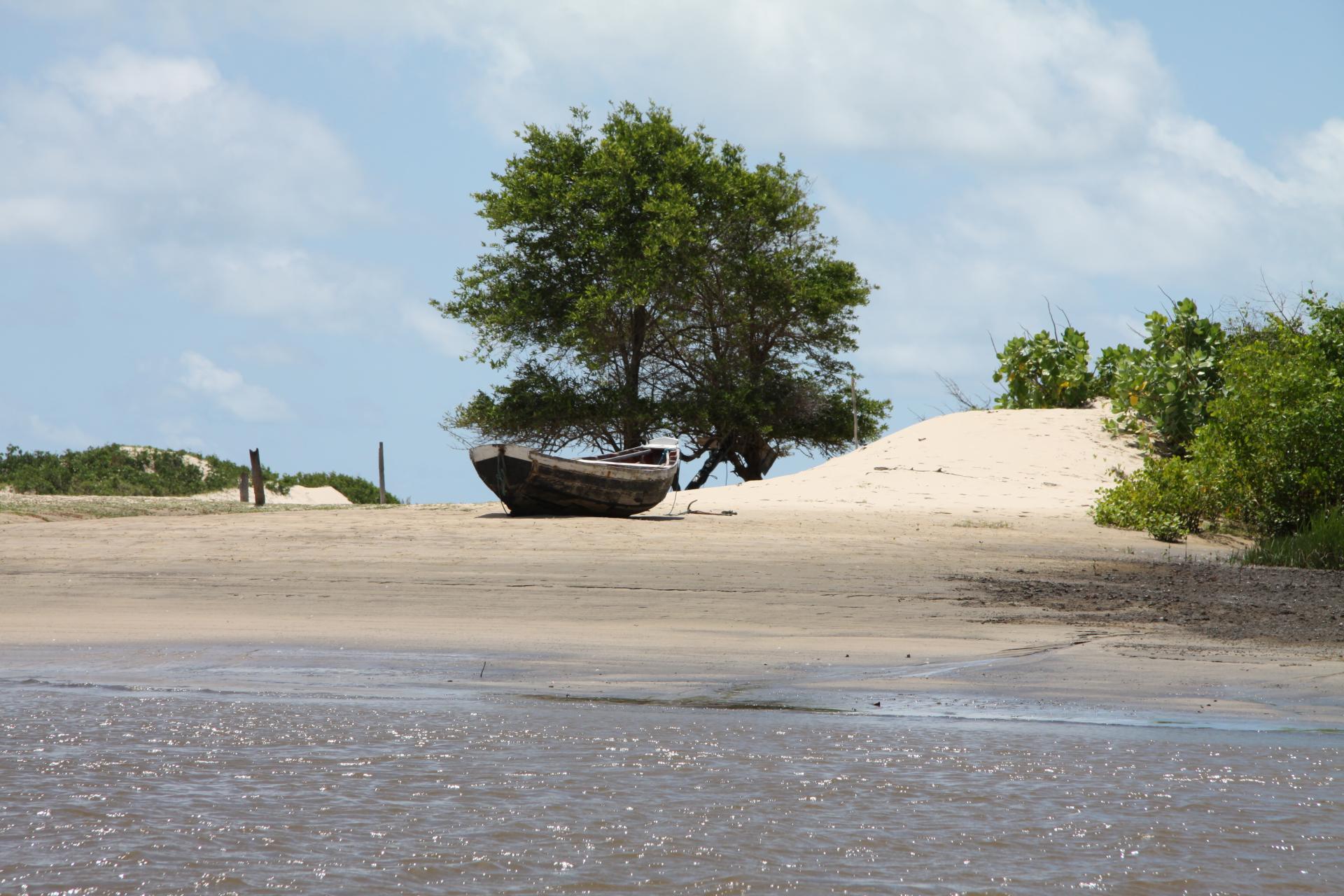 Ein Boot inmitten der einzigartigen Landschaft bei Cabure