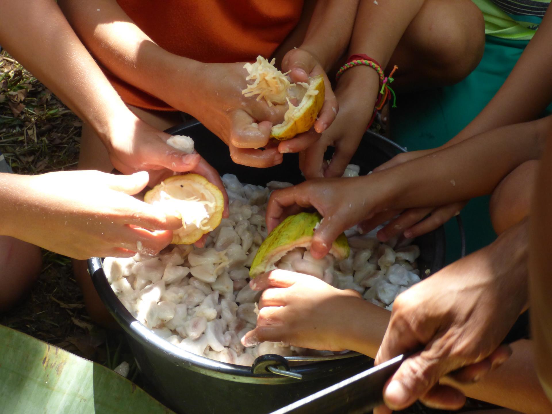 Familienurlaub auf einer Kakaofazenda in Bahia