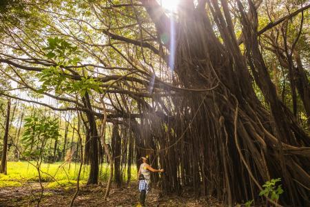 Nachhaltiges Reisen im Amazonasgebiet