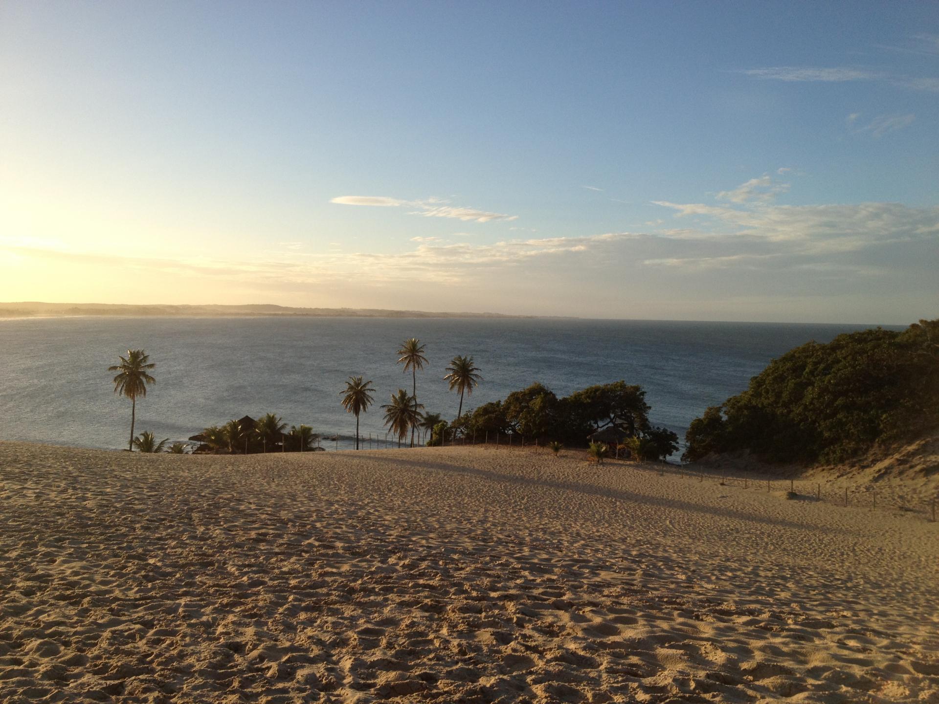 Blick von Sanddünen auf Palmen und das Meer bei Natal