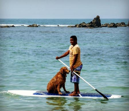 Stand Up Paddle: Brasilianer und Hund