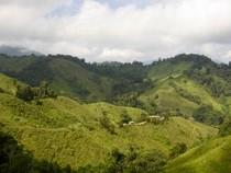 Kolumbianische Anden mit tropischem Regenwald