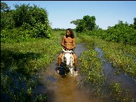 Reiter im Pantanal