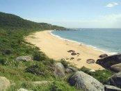 Begrenzt von Mata Atlantica: ein Strand
