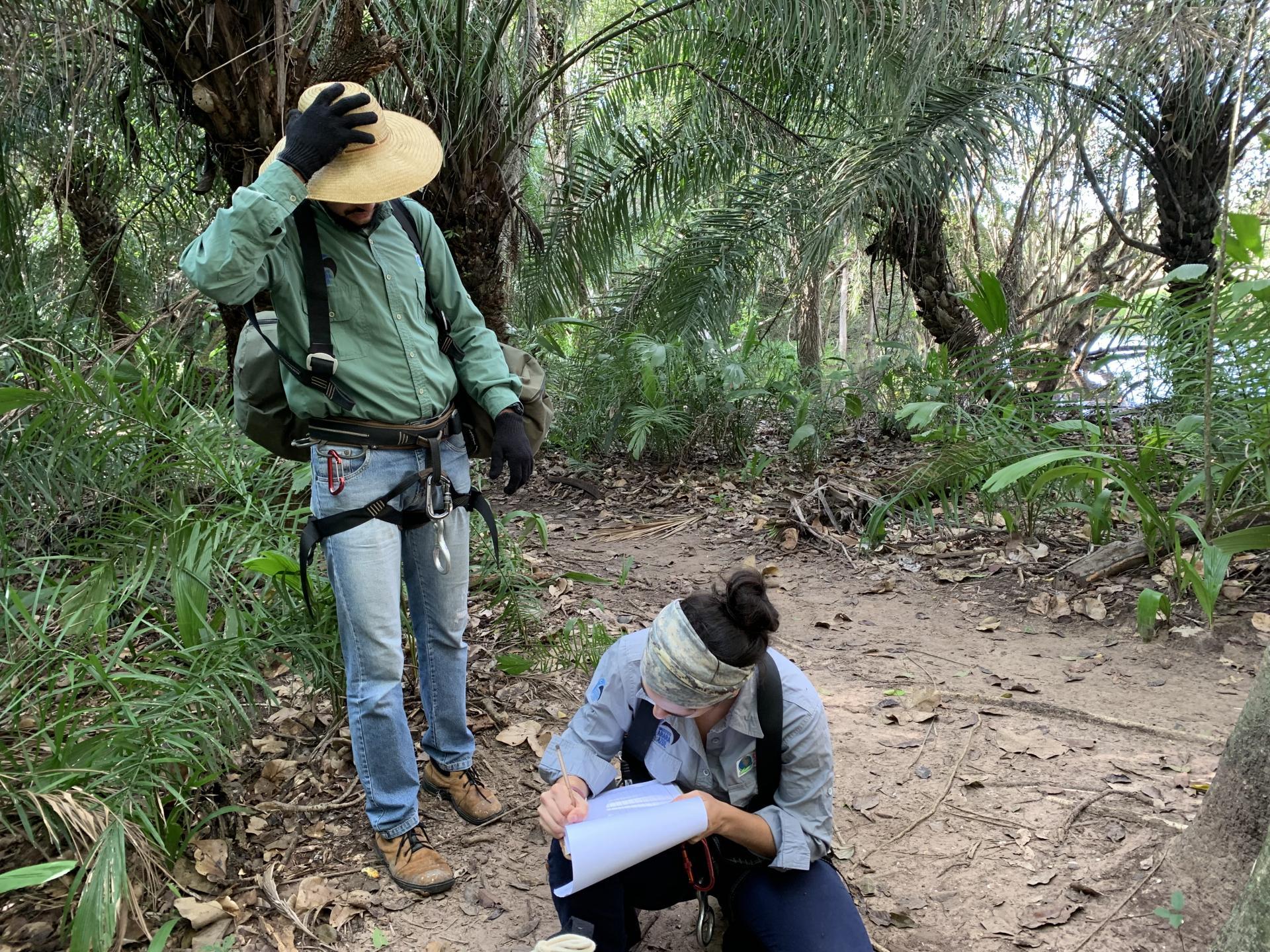 Zwei Biologen des Instituto Arara Azul