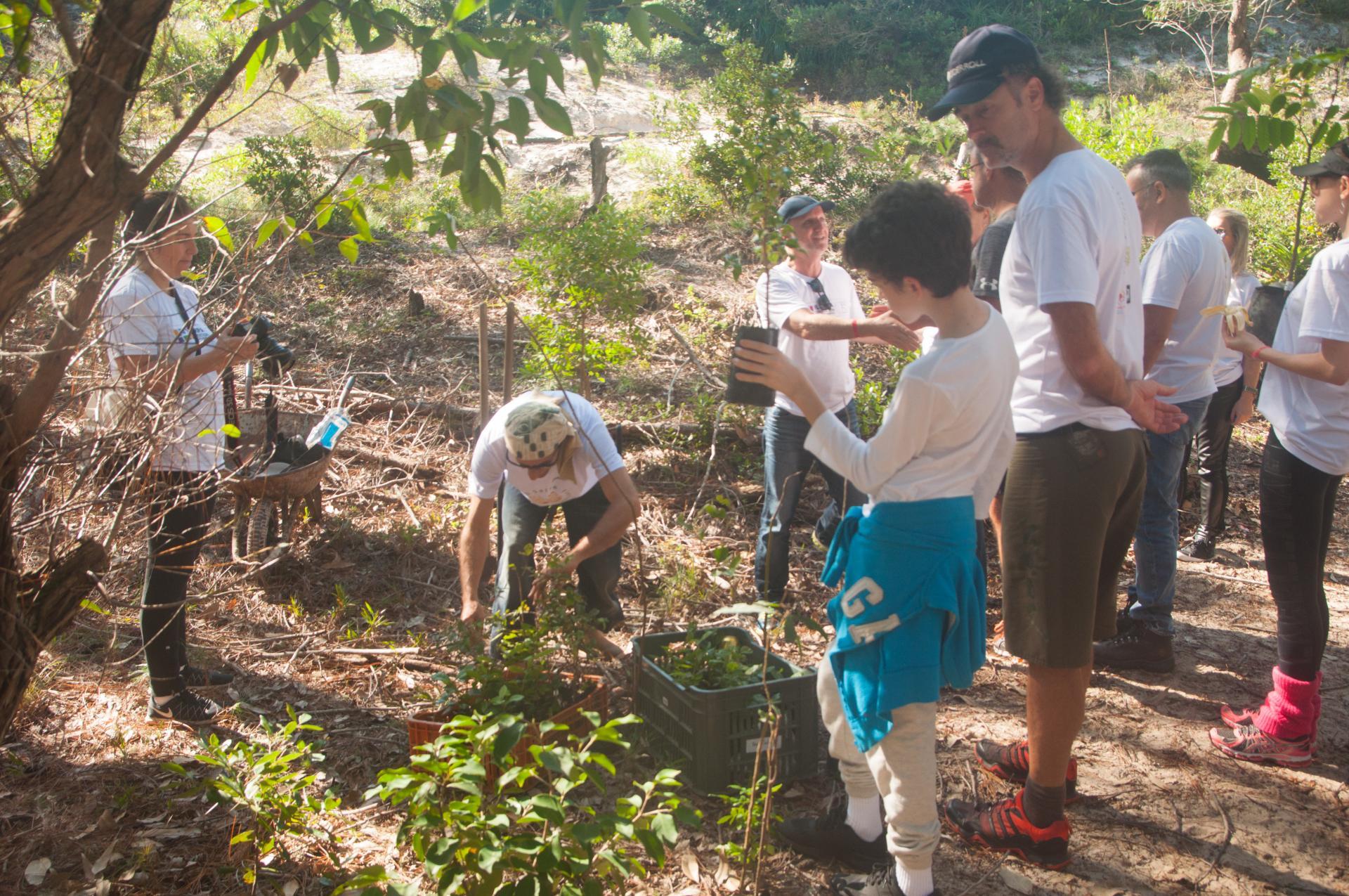 Gemeinschaftsaktion zum Erhalt der Mata Atlantica