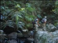 Urlauber im Atlantischen Regenwald
