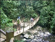 Holzbrücke auf der Rota das Cachoeiras