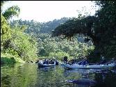 Per Kajak im Atlantischen Regenwald
