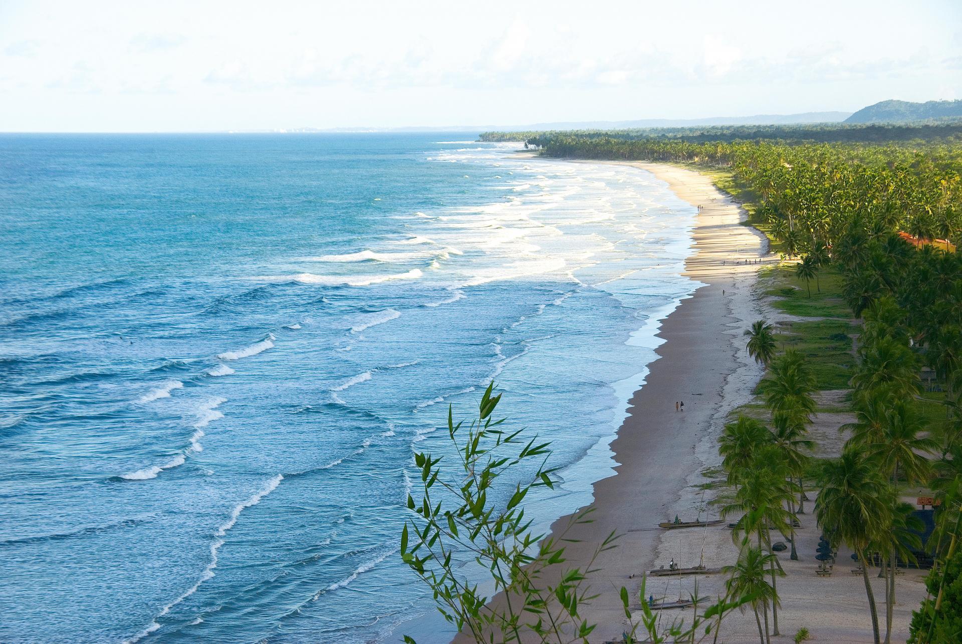 Panoramablick auf den menschenleeren Strand von Itacare und den Palmenwald im Hintergrund