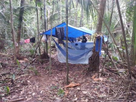 Nachtlager im Regenwald