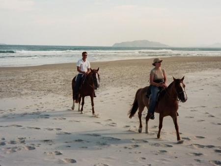 Reiter mit Pferd am Strand