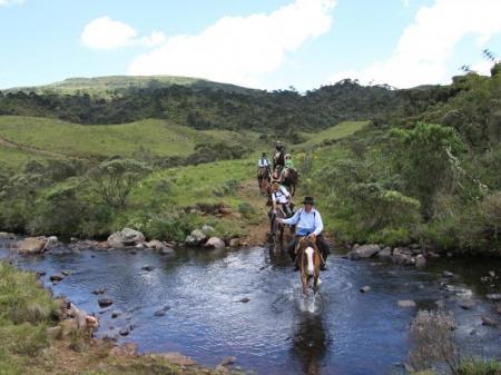 Pferde mit Reiter überqueren einen Fluss