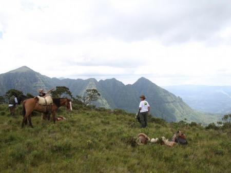 Pferde und Guide vor beeindruckender Canyonlandschaft der Serra Catarinense