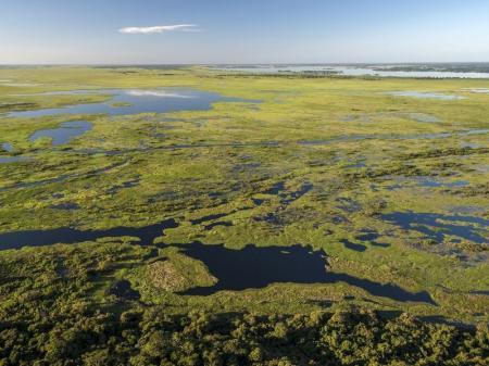 Luftaufnahme Nord-Pantanal