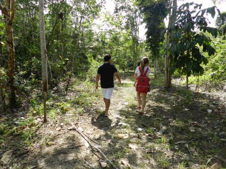 Gäste wandern durch den Regenwald um die Turtle Lodge