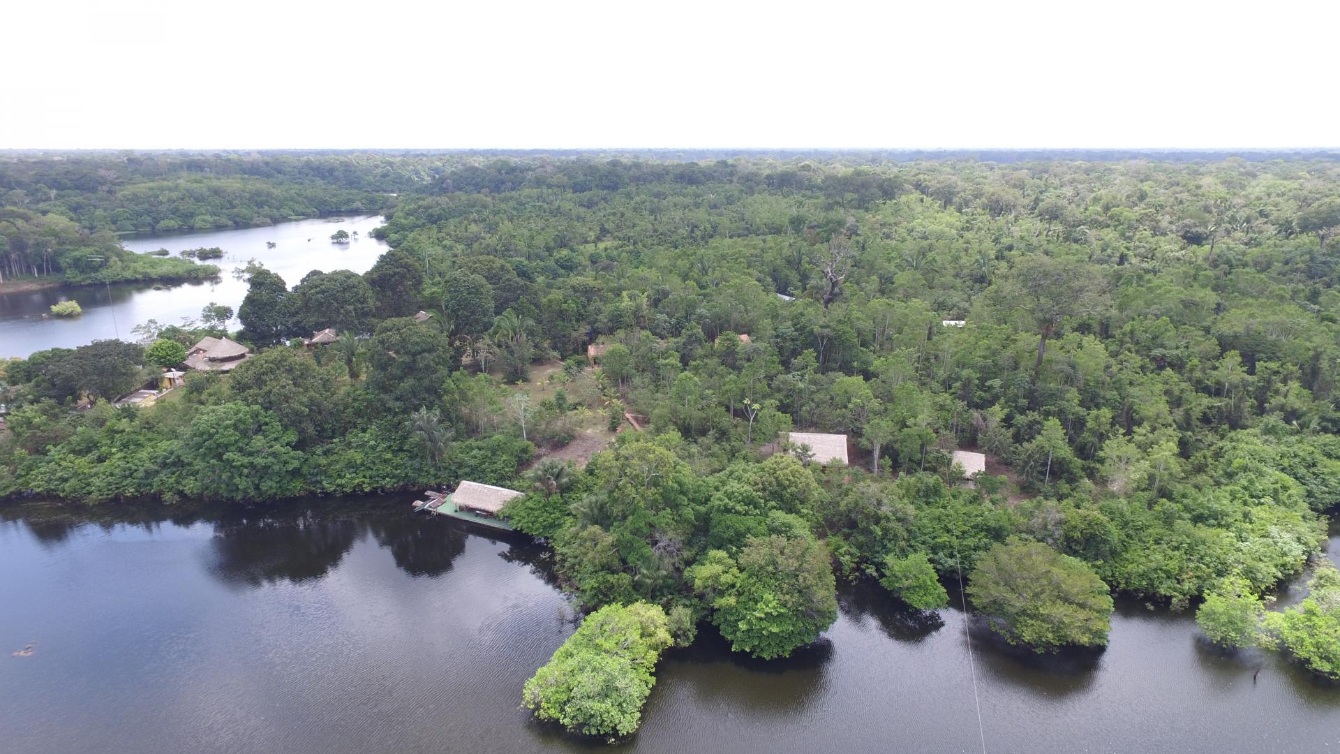 Brasilien Amazonasgebiet: 4 Tage Reisebaustein - Turtle Lodge Pupunha Paket: Drohnenbild des Dschungels