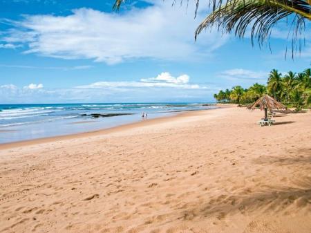 Menschenleerer Sandstrand mit Palmen auf der Insel Boipeba in Bahia