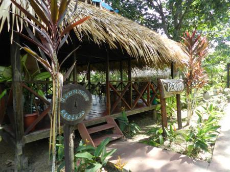 Hütte mit Hängematten in der Turtle Lodge im Amazonas