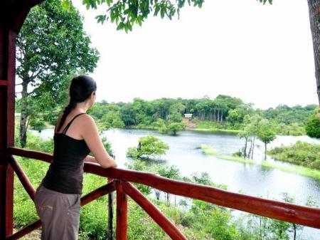Aussicht eines Bungalows der Turtle Lodge auf den Fluss und die Natur