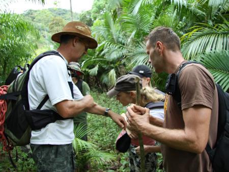 Erkundung von Flora und Fauna im Atlantischen Regenwald
