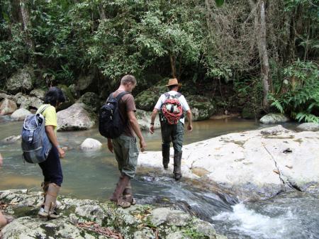 Wanderung im Atlantischen Regenwald