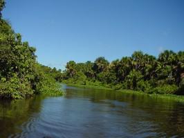 Orinco Delta Fluss