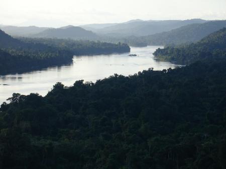 Der Caura Fluss in Venezuela bietet wunderschöne Landschaften und eine einmalige Tierwelt