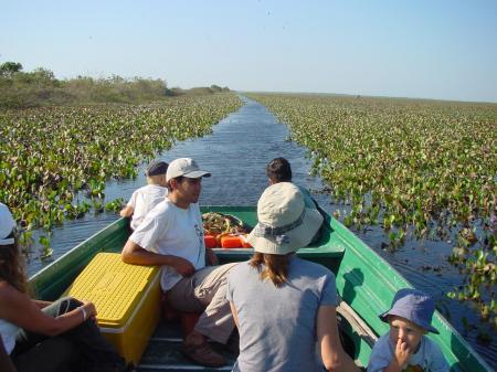 Begeben Sie sich mit uns auf Tiersafari in Los Llanos in Venezuela in Form einer Bootstour