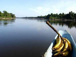 Rio Caura Boot