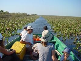 Ein Boot in Llanos bei einer Reise durch Venezuela.