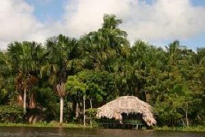 Orinoco Delta Hütte