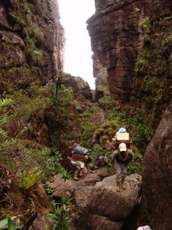 Auf einer Trekkingreise durch Venezuela entdecken Sie den Tafelberg Auyan