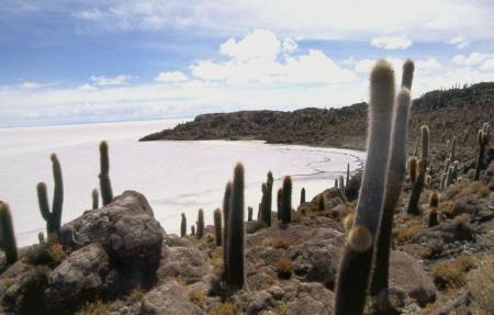 Unternehmen Sie einen Ausflug im unbeschreiblichen Salar de Uyuni in bolivien