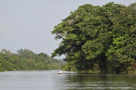 Die tropische Natur des Amazonasgebiets in Kolumbien auf einer Rundreise erleben