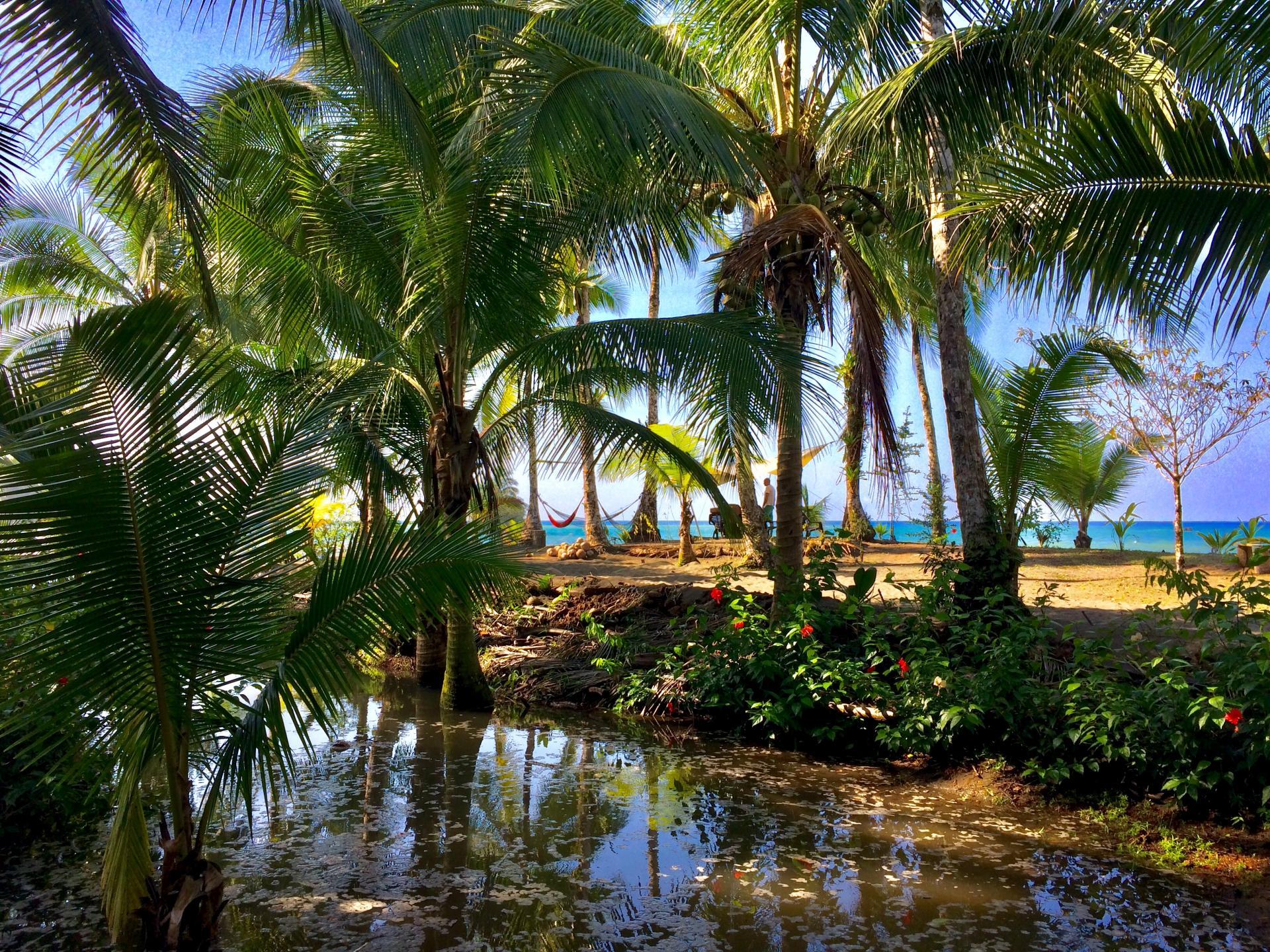 Die paradiesische Pazifikküste Kolumbiens kennenlernen und im Küstenort Nuqui entspannen