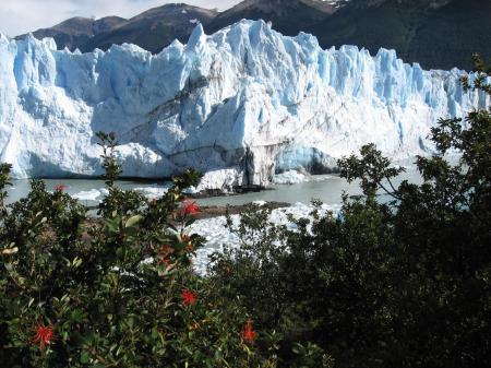 Auf einer Patagonien Rundreise können Sie den einzigartigen Perito Moreno Gletscher besuchen