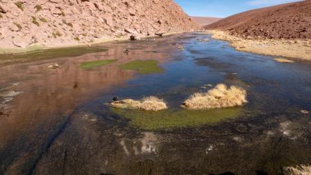 Die Umgebung von San Pedro de Atacama hat wunderschöne Landschaften zu bieten