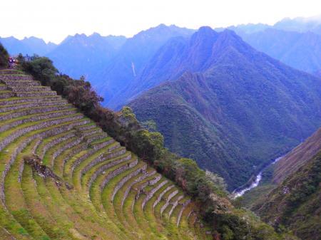 Entdecken Sie die alten Terrassen der Inka auf dem Weg nach Machu Picchu