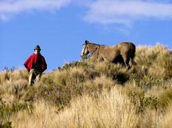 Indio mit Pferd im ecuadorianischen Hochland bei Reise durch Ecuador