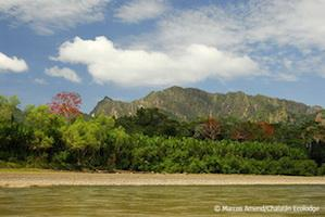Bolivien_Madidi_Nationalpark_Landschaft
