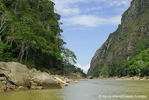 Madidi_Nationalpark_reise_bolivien