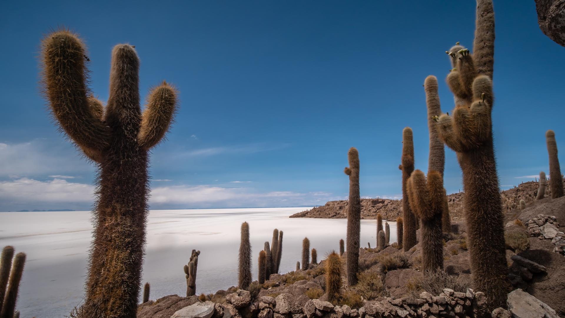 Erleben Sie Bolivien mit seinen unterschiedlichen Regionen auf einer ganz besonderen Rundreise