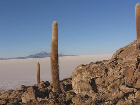 Erkunden Sie den bekannten Salar de Uyuni auf Ihrer Bolivien Reise