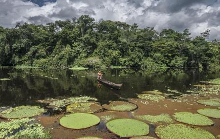 Bootsfahrt auf dem Amazonas auf einem einfachen Boot erleben