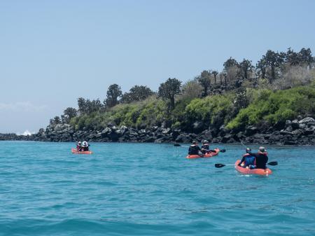 Erleben Sie eine unvergessliche Rundreise durch die Galapagos Inseln in Ecuador