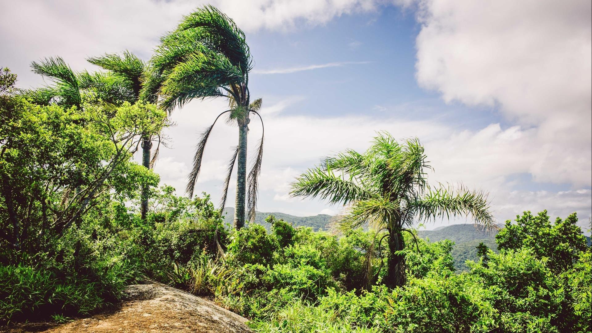 Brasilien Santa Catarina: 5 Tage Reisebaustein - Estaleiro und Florianopolis naturnah erleben