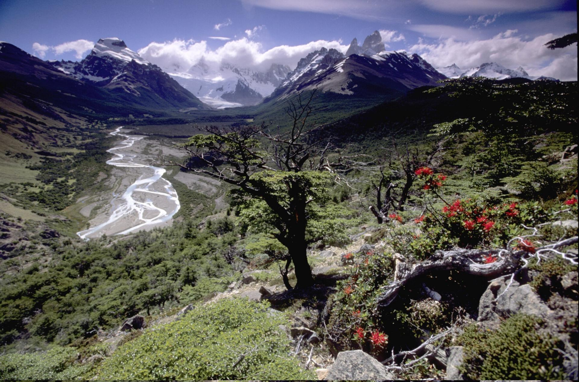 Entdecken Sie die Natur Patagoniens auf Ihrer Argentinien Rundreise