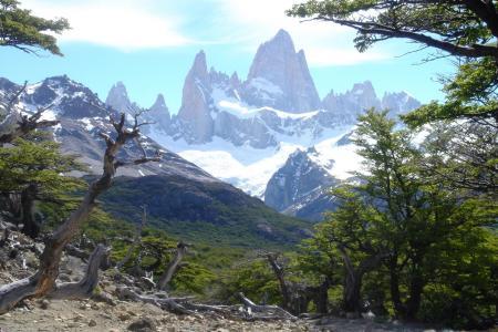 Reisen Sie nach Patagonien und entdecken Sie die einmalige Natur des Fitz Roy